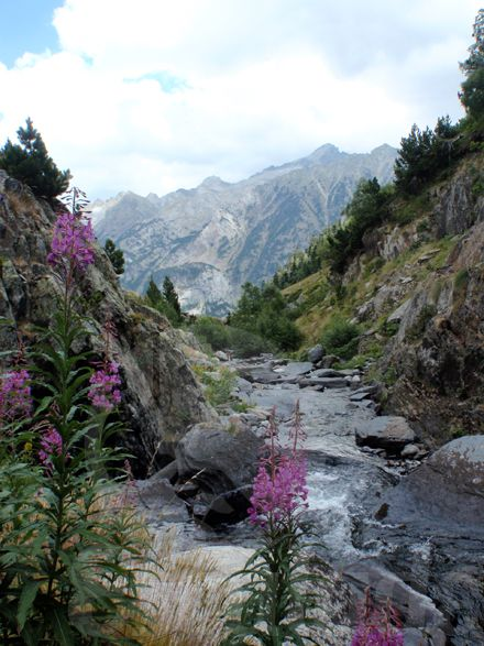 camping spanje pyreneeen